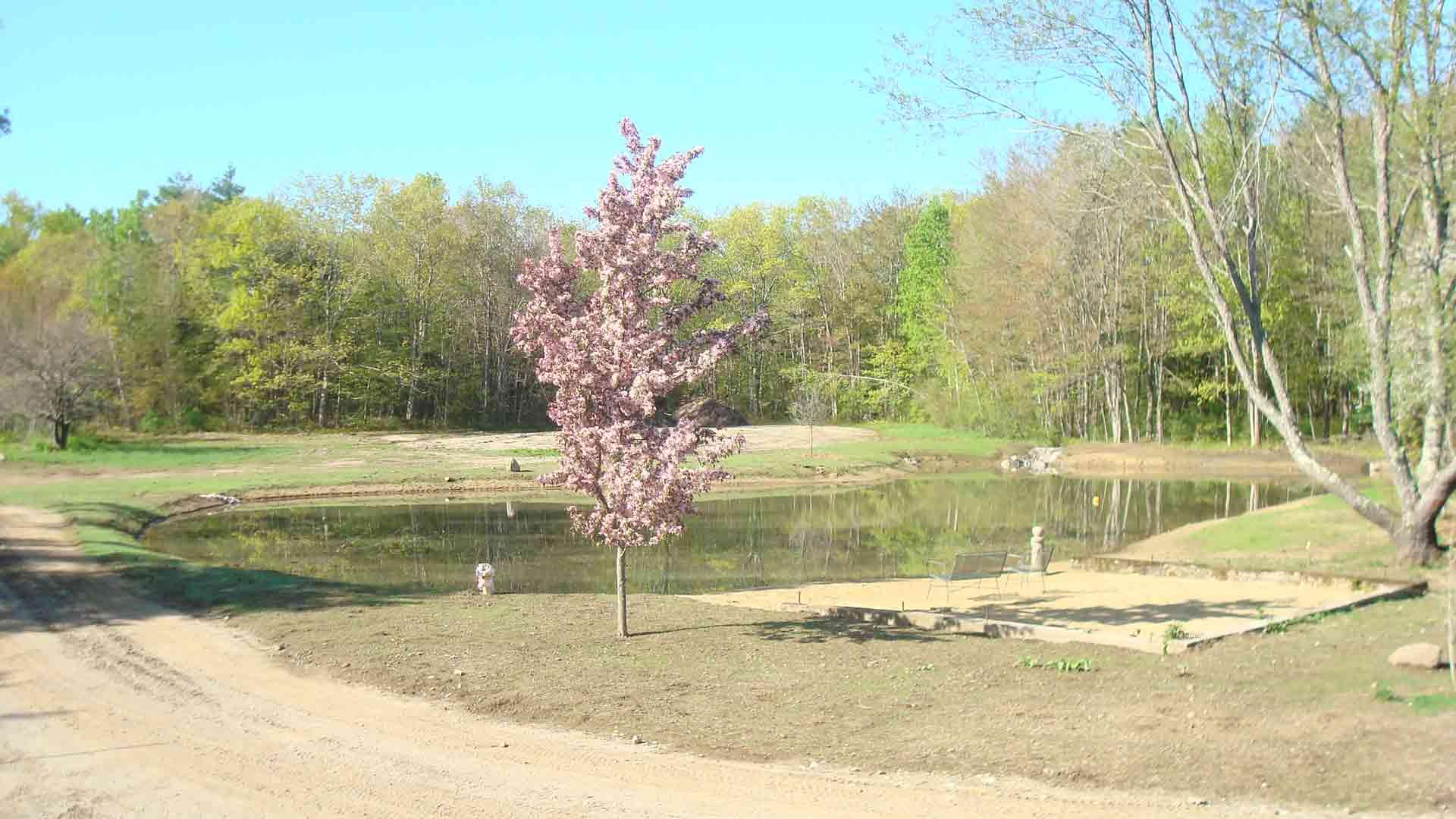 Blackrock Farm Irrigation Pond